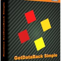 runtime-getdataback-simple-3-10-crack-license-key-download