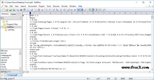 EditPlus 4.2 Build 1245 Crack & Serial Key Download