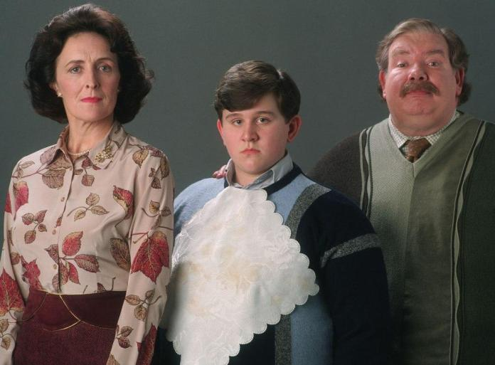What happened to Dursley's after deathly hallows