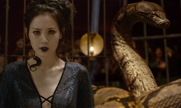 The Story of Nagini and How She Met Lord Voldemort - Craffic
