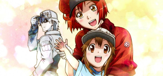 8 Great Educational Anime shows that will help you learn - Cells at Work!
