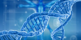 Scientists finally Sequenced the Entire Human Genome nearly After 20 years of first draft
