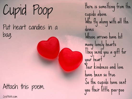 Cupid Poop: Valentine's Day Gift