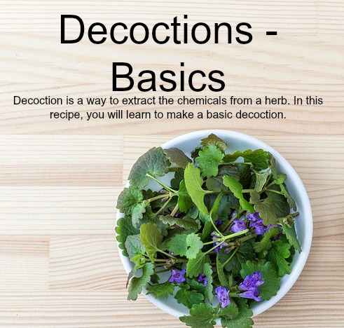 Decoctions – Basics