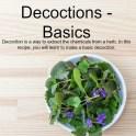 Decoctions - Basics