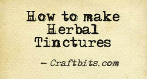 Herbal Tinctures – Basics