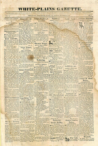 Newspaper Scrapbook