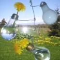 Light Bulb Window Vase