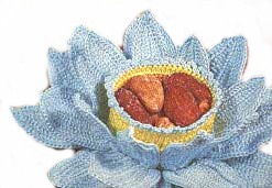 Crochet Flower Petal Bowl