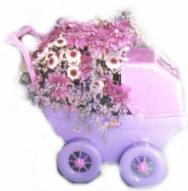 toy pram floral
