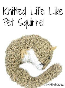 life-like-pet-squirrel