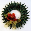 Wreath Made With Milkweed Pods