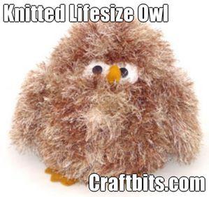 Life Sized Owl
