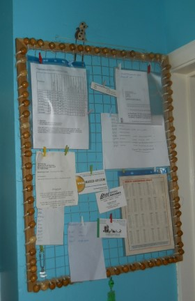 Chicken Wire Notice Board
