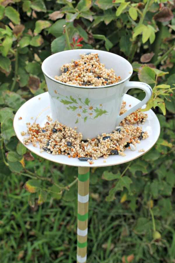 Diy Tea Cup Bird Feeders Craftbits Com