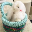 How to make Crochet Easter Baskets