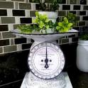 DIY Vintage Farmhouse Kitchen Scales