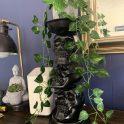 Dollar Tree Halloween Skull Plant Stand