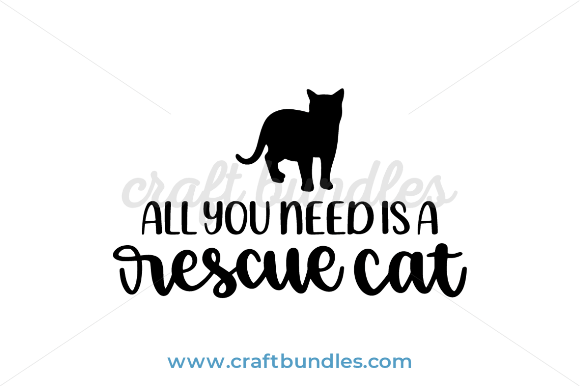 Download All You Need Is A Rescue Cat SVG Cut File - CraftBundles