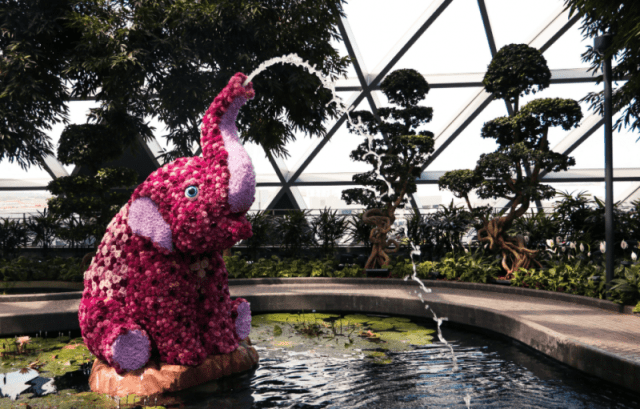 Staycation in Singapore at the Crowne Plaza Changi Airport. An attraction is Jewel's Canopy Park Topiary Walk with an elephant-shaped botanical sculpture