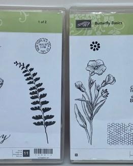 138813 Butterfly Basics