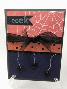 Spider eeek