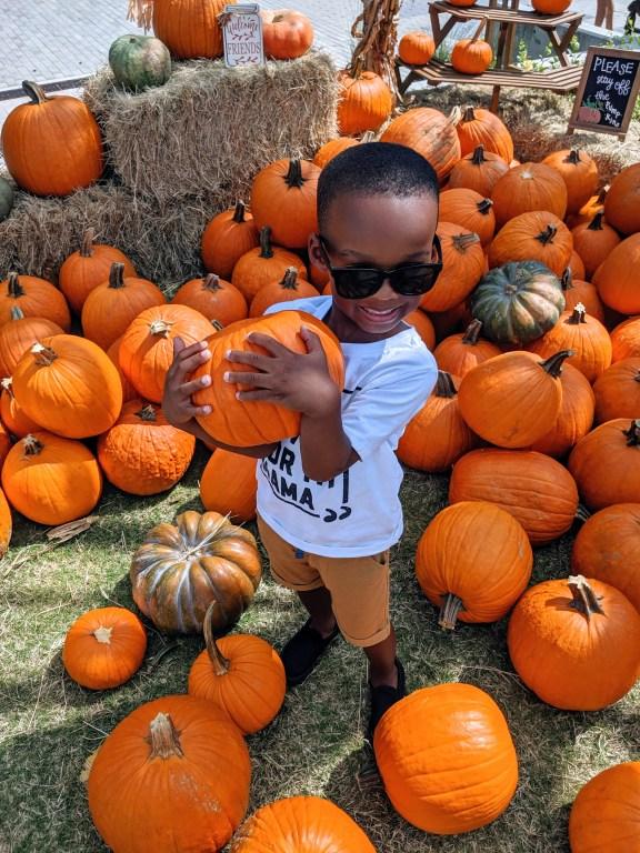 fall bucket list including visiting pumpkin patch