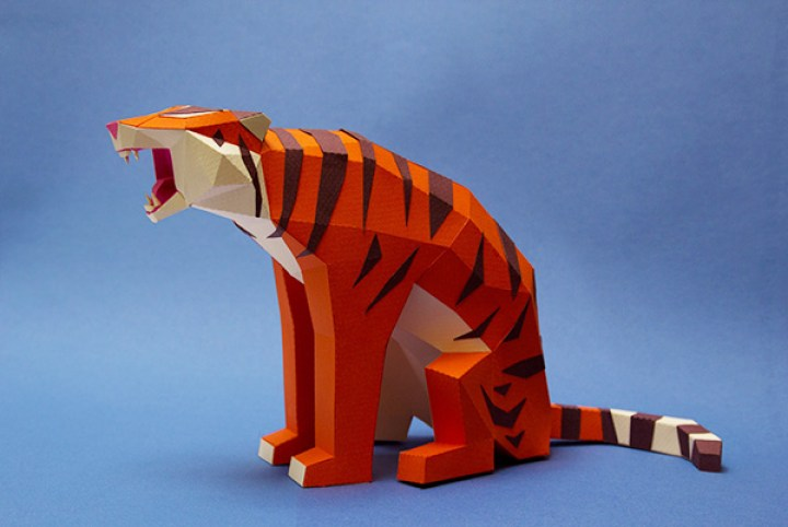6_tigre