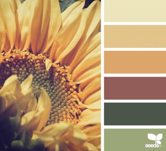 Combinacion de colores: Otoño
