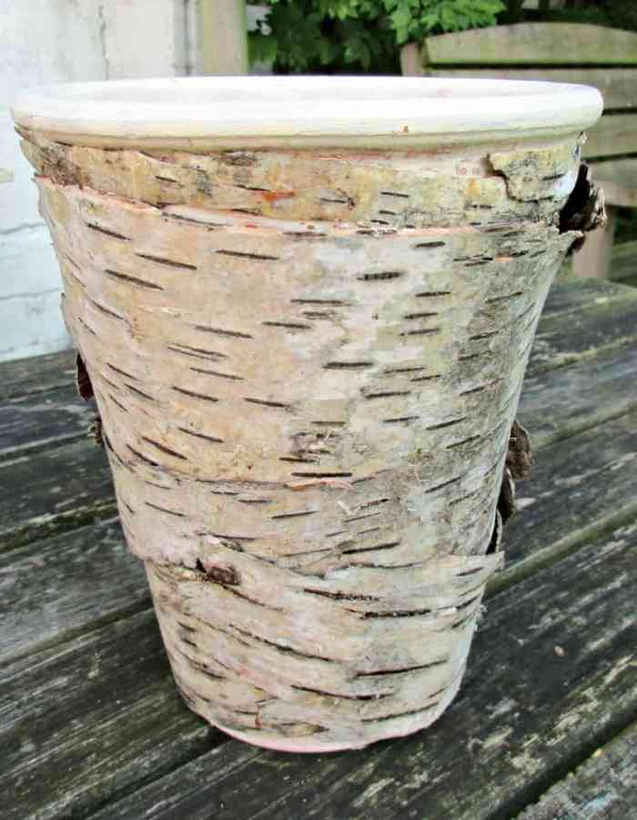 Great tutorial with step by step instructions on how to decorate a flower pot with Birch Bark. Lovely Rustic effect. Would make a lovely home-made gift :)