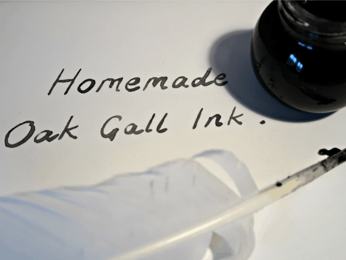 Oak Gall Ink (also known as Iron Gall Ink) is made from the crushed up galls found on Oak trees. This tutorial shows you how we made it using galls we found on a walk, a nail and some vinegar.