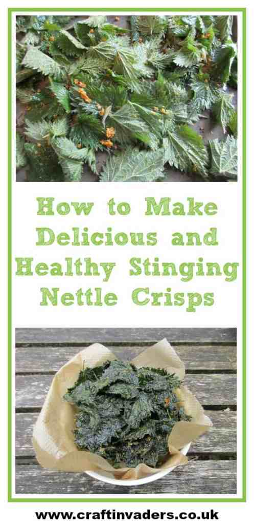 Today I am sharing my latest favourite way of eating nettles in this simple, delicious rand incredibly healthy recipe for Stinging Nettle Crisps!