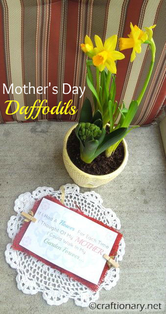 easy flower pot moms day gift idea