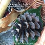 Celebrate Autumn – Create Nature Table