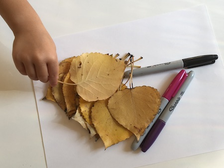 fall materials for kids activities