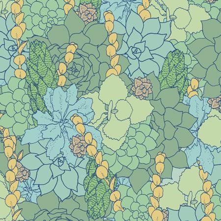 succulent-colored1