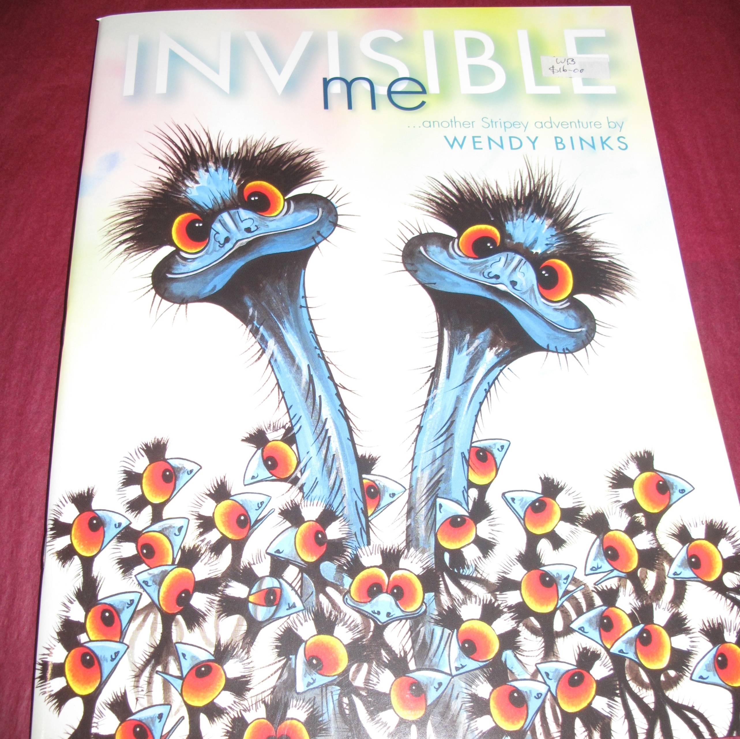 Image result for invisible me