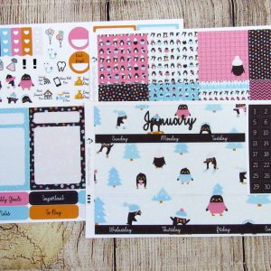 January Monthly Sticker Set, BIG HAPPY PLANNER