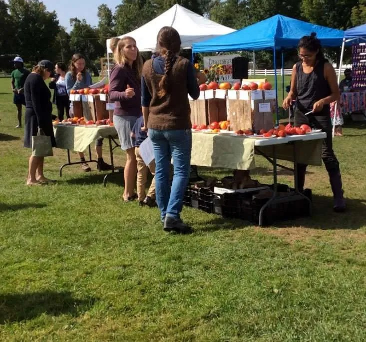 Visitors taste testing tomatoes at the Craftsbury Farmers' Market