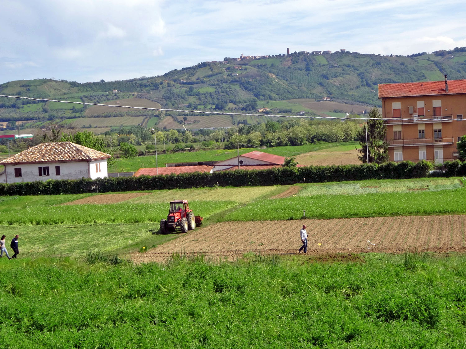 Your Salad's Trouble with Sustainable Farming | from Craftsmanship, an online magazine
