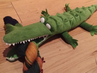An Actual Crocodile
