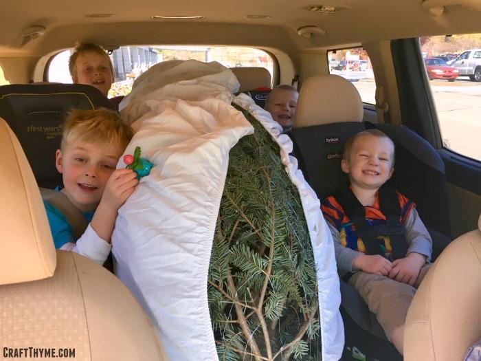 Getting a Christmas Tree