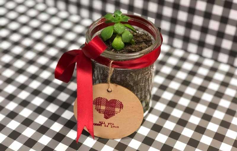Succulent Jar Planting