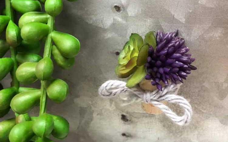 Mini Succulent Pot Magnet @ Medford Location | Medford | Oregon | United States