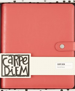 The Carpe Diem Planner is Coral
