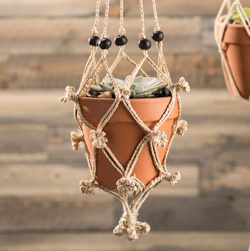 Succulent and macrame
