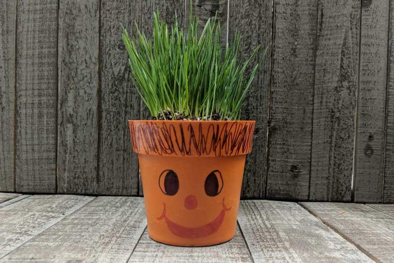 Spring Break: Wheatgrass Eco-Planter @ Craft Warehouse @ Gresham Station | Gresham | Oregon | United States