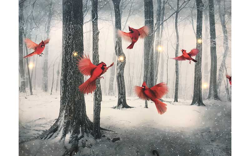Lights in a Digital Print of Cardinals in the Woods