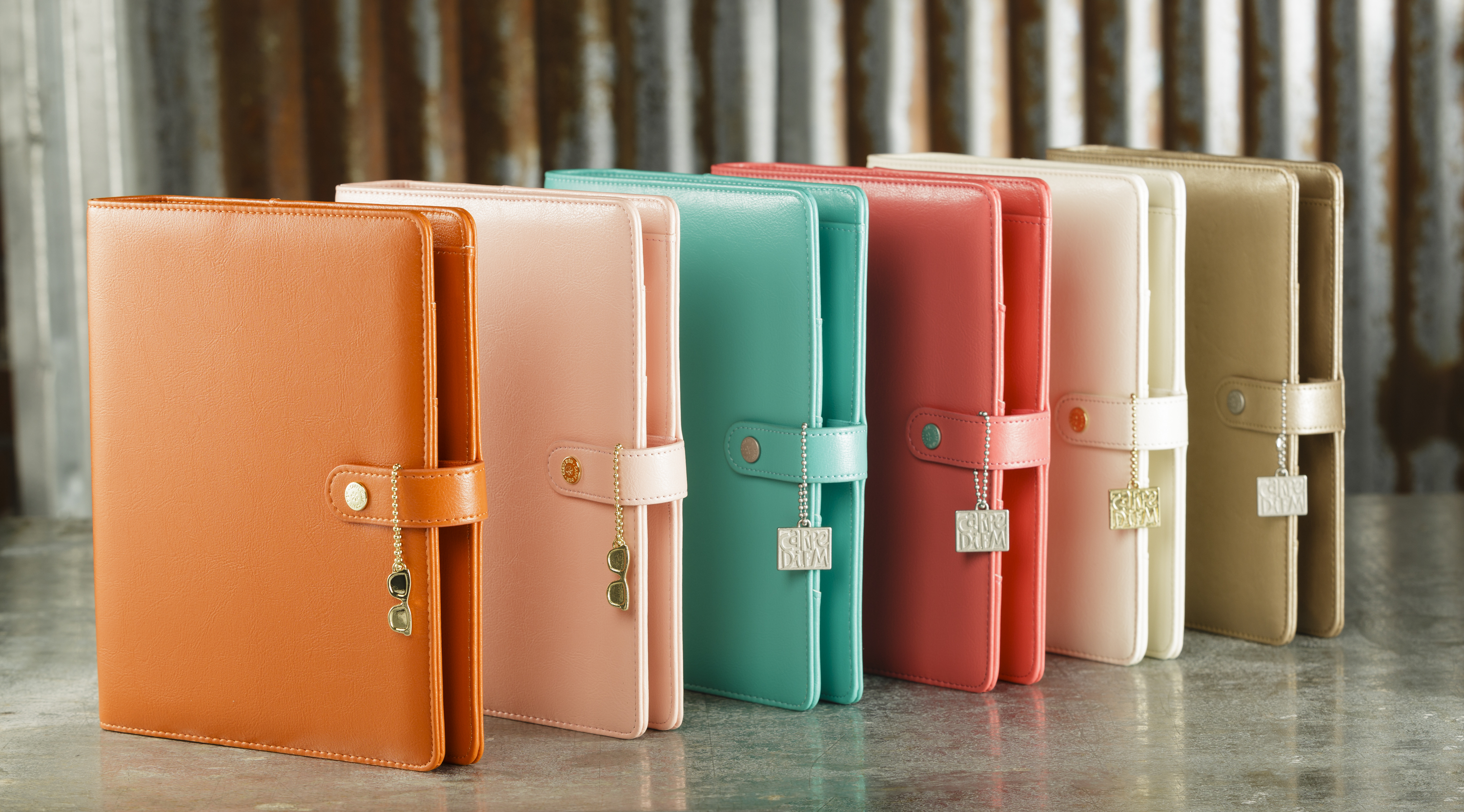 Gorgeous Colors of the Carpe Diem Planners at Craft Warehouse