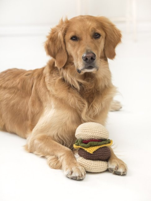 Knit your Dog a Hamburger Toy with Vanna Yarns